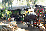 SECLUDED BUNGALOW WITH THATCHED ROOF, THICK FOLIAGE & LIFE-SIZED METAL HORSE (2)