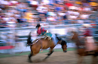 Blurred action image of a cowboy on a horse in a bronc riding event at a rodeo. Texas.