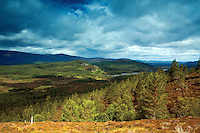 Rothiemurchus from above Loch Gamhna, Cairngorm National Park, Badenoch and Speyside