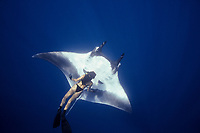woman freediver and giant oceanic manta ray, Mobula birostris, formerly Manta birostris, Mexico, Pacific Ocean