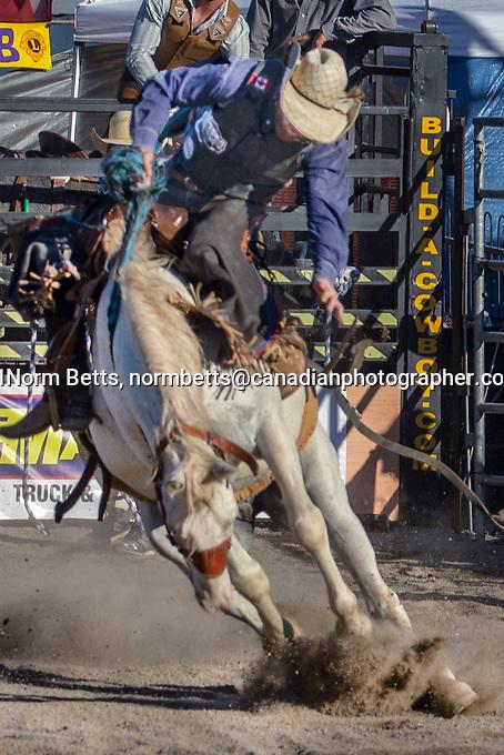 The RAM Rodeo Tour, two shows ar the Binbrook Fair, Sept. 18, 2021.