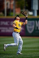 Erie SeaWolves first baseman Josh Lester (17) catches a popup during an Eastern League game against the Altoona Curve and on June 4, 2019 at UPMC Park in Erie, Pennsylvania.  Altoona defeated Erie 3-0.  (Mike Janes/Four Seam Images)