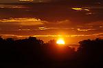 Sunset in the Kwara Reserve, Botswana.