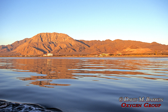 Baja Mainland From Sea Of Cortez