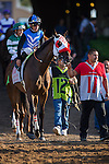 DEL MAR,CA-SEPTEMBER 04: Free Rose,ridden by Norberto Arroyo,Jr, wins the Del Mar Derby at Del Mar Race Track on September 04,2016 in Del Mar,California (Photo by Kaz Ishida/Eclipse Sportswire/Getty Images)
