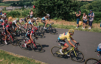 peloton with yellow jersey / GC leader Greg Van Avermaet (BEL/BMC) up the 3rd climb of the day<br /> <br /> Stage 5: Lorient > Quimper (203km)<br /> <br /> 105th Tour de France 2018<br /> ©kramon