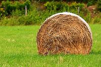 Cut field with hay bales. Smaland region. Sweden, Europe.