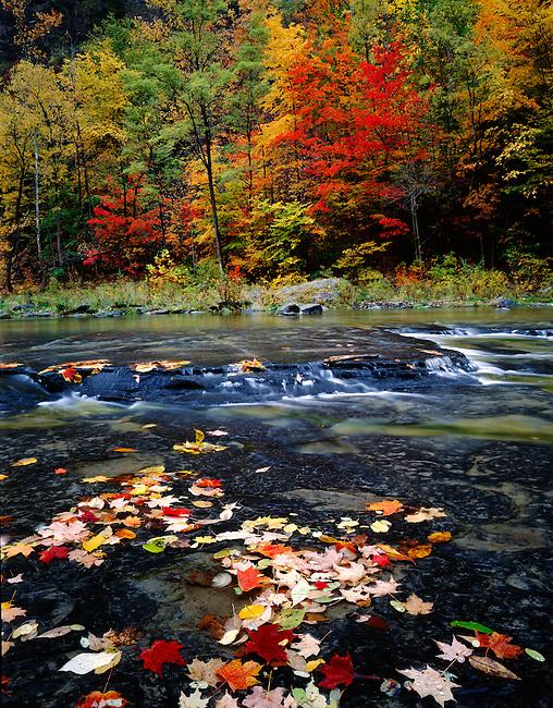 Fall colors; Taughannock Falls State Park