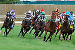 Little Mike (no. 1), ridden by Joe Bravo and trained by Dale Romans, wins the  26th running of the grade 1 Woodford Reserve Turf Classic Stakes for four year olds and upward on May 05, 2012 at Churchill Downs in Louisville, Kentucky.  (Bob Mayberger/Eclipse Sportswire)