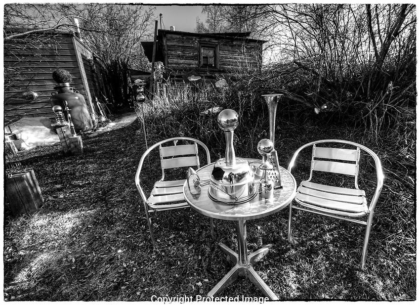 Spring in the Woodyard