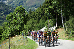The peloton led by Team Jumbo-Visma during Stage 4 of Criterium du Dauphine 2020, running 157km from Ugine to Megeve, France. 15th August 2020.<br /> Picture: ASO/Alex Broadway | Cyclefile<br /> All photos usage must carry mandatory copyright credit (© Cyclefile | ASO/Alex Broadway)
