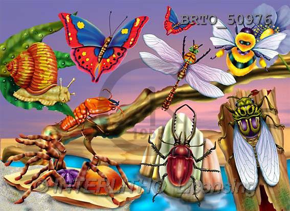 Alfredo, CUTE ANIMALS, puzzle, paintings(BRTO50976,#AC#) illustrations, pinturas, rompe cabeza