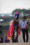 OCT 17,2015: Nobori Diana,ridden by Christophe Lemaire,wins the Fuchu Himba Stakes at Tokyo in Tokyo,Japan. Kazushi Ishida/ESW/CSM