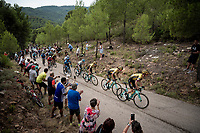 Team Jumbo-Visma leading the way for Primoz Roglic (SVK/Jumbo-Visma) up the steepest part of the brutal Mas de la Costa: the final climb towards the finish<br /> <br /> Stage 7: Onda to Mas de la Costa (183km)<br /> La Vuelta 2019<br /> <br /> ©kramon