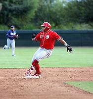 Ruben Ibarra - 2021 AIL Reds (Bill Mitchell)