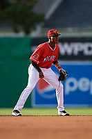Batavia Muckdogs shortstop Dalvy Rosario (17) during a NY-Penn League game against the Auburn Doubledays on June 14, 2019 at Dwyer Stadium in Batavia, New York.  Batavia defeated 2-0.  (Mike Janes/Four Seam Images)
