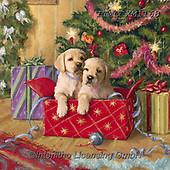 Marcello, CHRISTMAS ANIMALS, WEIHNACHTEN TIERE, NAVIDAD ANIMALES, paintings+++++,ITMCXM1168,#xa#