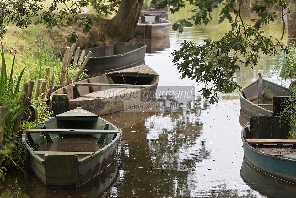 Europe/France/Pays de la Loire/44/Loire-Atlantique/Parc Naturel Régional de Brière/Saint-Lyphard: Chalands au Port de la pierre Fendue