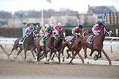 Sisterly Love (8)  leads the Top Flight field around the clubhouse turn. Eventual winner Summper Applause (Orange and blue) is in midpack early.