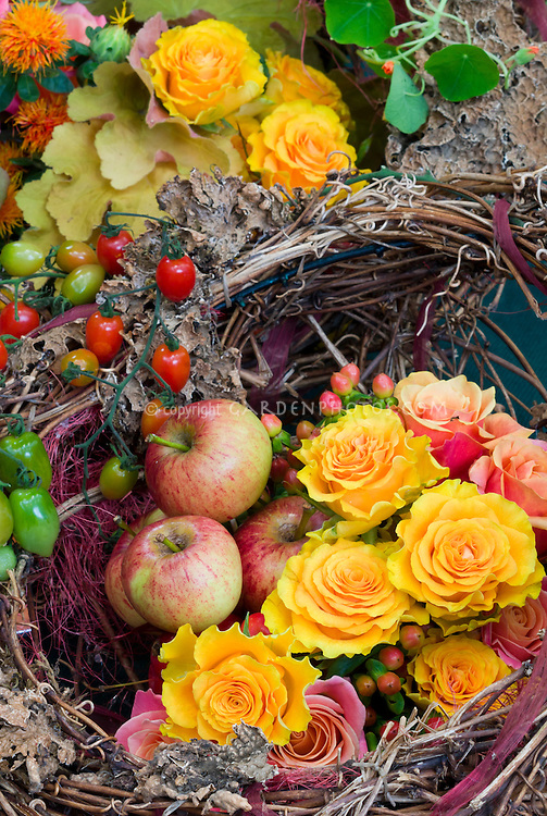 Harvest basket of apples fruits, roses, flowers, vegetables, autumn picked fall crops, from edible garden Northern Spy heirloom antique apple variety, Malus domestia 'Northern Spy'. The 'Northern Spy' apple, also called 'Spy' and 'King', is a cultivar of domesticated apple that originated in East Bloomfield, New York in about 1800.