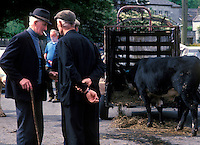 Farmers in discussion at the livestock market, Kenmare, County Kerry, Ireland