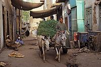 Afrique/Egypte/Esna: Attelage dans les souks
