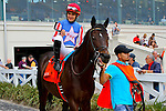 February 21, 2015: Nates Mineshaft with Miguel Mena up in the Mineshaft Handicap at the New Orleans Fairgrounds Risen Star Stakes Day. Steve Dalmado/ESW/CSM