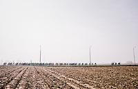 The whole peloton<br /> <br /> 81st Gent-Wevelgem in Flanders Fields (1.UWT)<br /> Deinze > Wevelgem (251km)