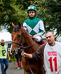 OCTOBER 8, 2018: Into the South in the Matron Stakes at Belmont Park on October 8, 2018 in Elmont, NY.  Sue Kawczynski/ESW/CSM