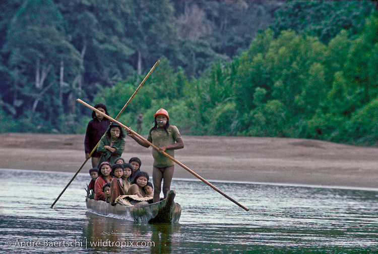 Recently contacted Yora (or Nahua) Indians from the Rio Cashpajali heading downriver by canoe along the upper Rio Manu in July 1985. Almost half of their population died of a respiratory infection epidemic within short time after a forced contact with a logging company in 1984. Lowland tropical rainforest, Manu National Park, Madre de Dios, Peru.