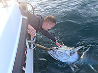 BNPS.co.uk (01202) 558833. <br /> Pic: AnglingAndAnxiety/BNPS<br /> <br /> With Video - Download: https://we.tl/t-WGwExzoqIw<br /> <br /> Pictured: Kevin caught his bluefin tuna while fishing off Falmouth in Cornwall. <br /> <br /> An angler who only took up the sport a year ago has caught the 'big four' of native sea fish by landing a deadly 256lb thresher shark.<br /> <br /> Kevin Finch is one of just a handful of fisherman to have claimed all four big game species.<br /> <br /> Video footage shows the dramatic moment Kevin pulled in the 6ft long shark, with a tail as long as it's body, alongside his boat off the coast of Bournemouth, Dorset.
