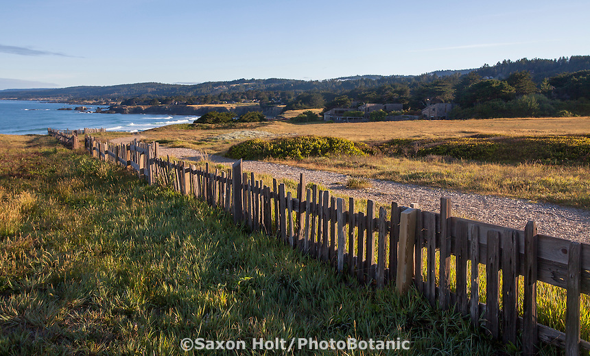 Weathered picket fence in coastal meadow bluff by Pacific Ocean at Black Point, The Sea Ranch