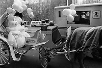 USA. New York City. A couple of white teddy bears celebrate their wedding, seated in a horse's carriage. Balloons. A US mail truck with the drawing of a bald eagle. 10.02.1986 © 1986 Didier Ruef