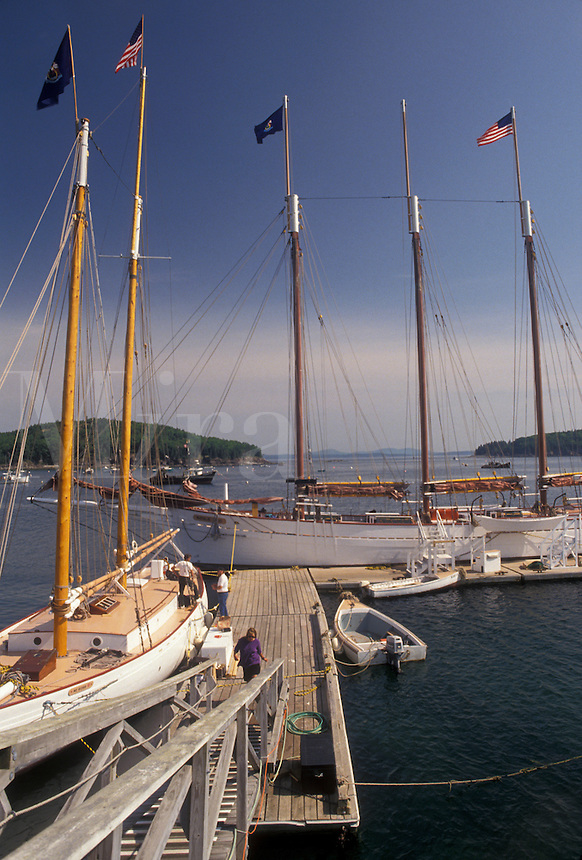AJ4487, Bar Harbor, sailboats, Maine, Atlantic Ocean, Sailboats docked at the marina on the harbor in the scenic seaside town of Bar Harbor on Mount Desert Island in the state of Maine.