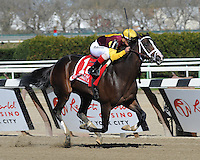 Broadway's Alibi wins the Grade III Comely at Aqueduct, New York....4/7/12....Ridden by Javier Castellano