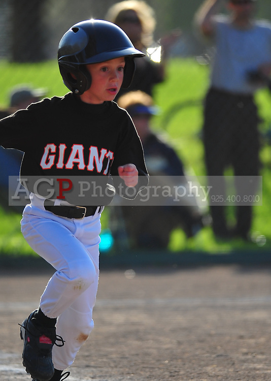 The Pleasanton National Little League Farm Giants  play at the Pleasanton Sports Park Saturday March 22, 2010. (Photo by Alan Greth)