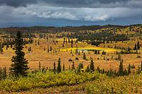 Kettle pond on the autumn tundra, Denali National Park, Interior, Alaska.