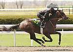 07 April 2011.  Hip #157 Posse - Hishi Amazon filly, consigned by Sequel Bloodstock.