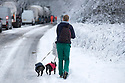 25/11/17<br /> <br /> After abandoning her car, a veterinarian nurse walks to work with her pugs along the A515 near Biggin in the Derbyshire Peak District.<br />  <br /> All Rights Reserved F Stop Press Ltd. +44 (0)1335 344240 +44 (0)7765 242650  www.fstoppress.com