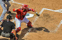 22 June 2014: Washington Nationals catcher Sandy Leon in action against the Atlanta Braves at Nationals Park in Washington, DC. The Nationals defeated the Braves 4-1 to split their 4-game series and take sole possession of first place in the NL East. Mandatory Credit: Ed Wolfstein Photo