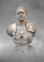 Roman marble sculpture bust of Emperor Domitian  81-96 AD, inv 6061 Farnese Collection, Naples Museum of Archaeology, Italy