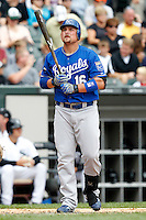 Kansas City Royals first baseman Billy Butler #16 during a game against the Chicago White Sox at U.S. Cellular Field on August 14, 2011 in Chicago, Illinois.  Chicago defeated Kansas City 6-2.  (Mike Janes/Four Seam Images)