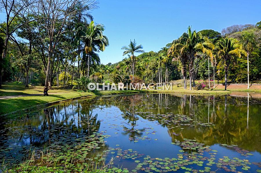 Lago das Ninféias, Jardim Botânico, Sao Paulo. 2021. Foto Juca Martins