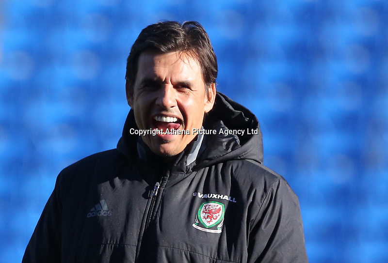 Manager Chris Coleman watches his players train during the Wales Press Conference and Training Session at The Cardiff City Stadium, Wales, UK. Monday 13 November 2017