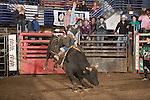 SEBRA - Beckley, WV - 1.15.2016 - Bulls & Action