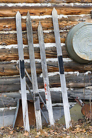Old wooden skis leaning on the side of a historic cabin in the old mining community of Wiseman, Alaska.
