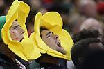 Passionate Welsh fans sing the national anthem.<br /> <br /> 2013 Dove Men Series<br /> Wales v South Africa<br /> Millennium Stadium<br /> 09.11.13<br /> ©Steve Pope-Sportingwales