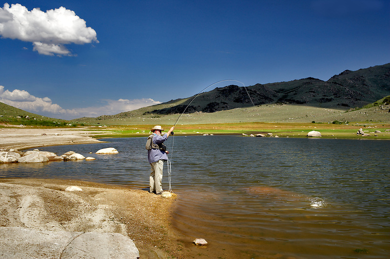 Fly fisherman with fish on at Onion Valley Reservoir. Nevada