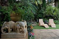Tropical Garden in London