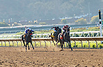 DEL MAR, CA  AUGUST 1:  #7 Shedaresthedevil, ridden by Florent Geroux, at the stretch of the Clement L. Hirsch Stakes (Grade 1) Breeders Cup Win and You're In Distaff Division on August 1, 2021 at Del Mar Thoroughbred Club in Del Mar, CA.